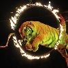Цирки в Карабаново